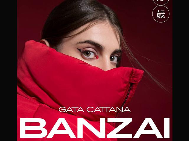 Familiares y Amigos Lanzan el disco de Gata Cattana, tras fallecer